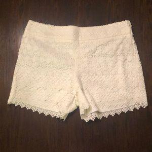 NWT Ann Taylor Loft cream lace shorts size 10